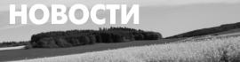 Безымянный-3-min (2).png